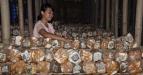 "Seorang pekerja menata ""bag log"" media tanam jamur tiram di Dusun Gawah Brore, Desa Giri Tembesi, Kec. Gerung, Lombok Barat, NTB, Senin (28/3). Menurut petani Jamur tiram putih (Pleuratus florida) yang dibudidayakan pada 2500 buah bag log tersebut dalam sehari menghasilkan 100 kg jamur yang dijual ke sejumlah pasar tradisional di wilayah Lombok Barat dan Mataram dengan omzet mencapai Rp.2 juta/hari. (FOTO ANTARA/Ahmad Subaidi)"