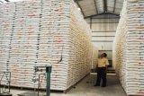 Bulog Mamuju distribusikan rastra kepada 8.158 KPM