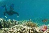 Kapolda Pimpin Sapu Laut Bunaken