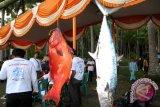 207 Nelayan Meninggal Di Laut