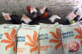 Bulog siapkan 9.600 ton beras untuk operasi pasar