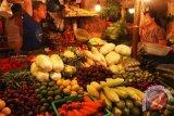 Komunitas vegetarian gelar Vegan Festival di Yogyakarta