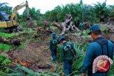 KLMB UGM diharapkan bantu pengusutan perusakan hutan