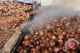 PLN Suluttenggo Manfaatkan Biomassa untuk  Listrik Kepulauan