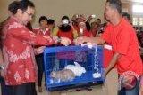 Wali Kota bantu kelinci untuk peternak