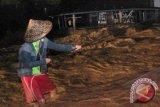 BMKG: Waspadai air sungai tiba-tiba keruh saat hujan