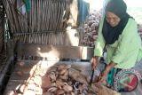 Harga kopra di Gorontalo turun