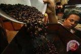 1,5 ton kopi disiapkan untuk