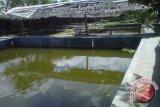 Pemkab dorong pemanfaatan selokan untuk pelihara ikan