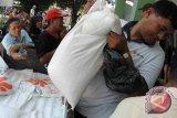 Bulog DIY gelar KPSH antisipasi kenaikan harga beras medium