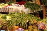 Harga sayuran di Gunung Kidul naik