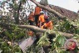 Belasan rumah di Bantul rusak terdampak angin kencang