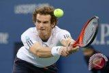 Andy  Murray usai cedera unjuk gigi di Brisbane