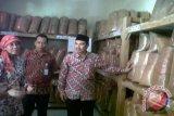 Kulon Progo diminta percepat peremajaan pohon kelapa
