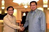 Prabowo akan temui Shinta Wahid, bujuk Yenny gabung tim sukses