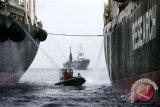 Greenpeace Diskusikan PErizini Kapal 1.000 GT