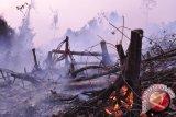 Kelurahan Ramai-Ramai Bentuk Balakarcana Antisipasi Bencana