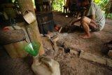 Proses Pembuatan Cap Tikus