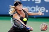 Sharapova Mundur Dari Turnamen Akhir Tur WTA Di Istanbul