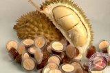 Petani HKM santong berminat produksi dodol durian