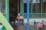Sebanyak 16.385 jiwa terdampak banjir di Kutai Kartanegara