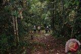 NTB  targetkan 35.000 ha hutan kemasyarakatan