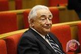 Strauss-Kahn: karir politik saya habis