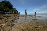 Sumbar bersaing dengan Bangka dan Bintan kembangkan wisata laut dan pulau