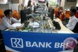Yayasan Baitul Maal BRI salurkan pendayagunaan dana zakat Rp115 miliar