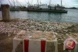 KKP Bantu Nelayan Korban Banjir