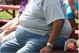 Studi: orang berbadan gemuk perpendek harapan hidup