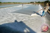 Jateng Optimistis Pembangunan Pabrik Garam Segera Terealisasi