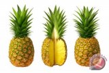 GPPC Supplies 20 Pct World's Need For Canned Pineapples