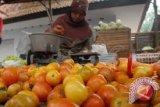 Harga tomat di Palu melonjak tajam