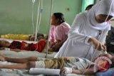 Waspadai DBD, sudah 19 penderita ditemukan di Kota Palu