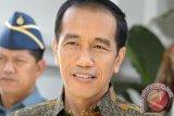 Presiden Jokowi Meninjau Kebon Kakao di Desa Salletto Sulbar