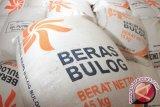 Bulog Timika sudah salurkan beras pengganti ke Kabupaten Puncak