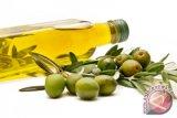 Cara gunakan minyak zaitun tanpa merusak kandungannya