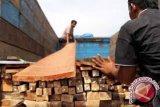 Tim Gakkum KLHK tangkap kapal pengangkut kayu illegal di Raja Ampat