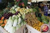 TPID Kulon Progo menjamin ketersediaan pangan aman hingga awal 2020