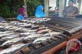 DKP Agam Targetkan Produk Olahan Ikan Tembus Supermarket