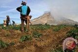 Letusan Gunung Sinabung berdampak cahaya matahari di Kutacane jadi tidak jelas