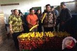 Nelayan Sulteng Pelajari Pengelolaan Koperasi Nelayan Indramayu