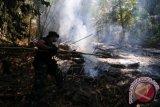 DPR nilai penanganan karhutla di Indonesia masih kurang efektif