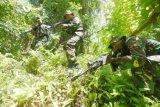 Prajurit TNI dari Korem 173/Praja Vira Braja melakukan latihan pengamanan daerah rawan (PAM Rahwan) di Pulau Biak, Biak Numfor, Papua, Senin (16/11). Kegiatan tersebut dilakukan guna mengantisipasi gangguan keamanan di Pulau Biak dan pulau-pulau sekitarnya. ANTARA FOTO/Akbar Nugroho Gumay/nz/15