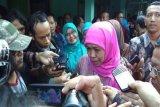 Mensos jamin kebutuhan pangan pengungsi gempa Halmahera
