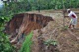 Jalur Evakuasi Merapi Tertutup Talud Longsor