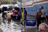 Industri perikanan Sulawesi Utara  butuh 300 ribu ton bahan baku