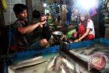 Palangka Raya Dorong Diversifikasi Produk Ikan Patin