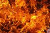 Kebakaran 32 Rumah di Dumai, Wilmar Salurkan Bantuan Kebutuhan Warga